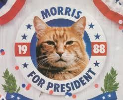 morris for president.jpg