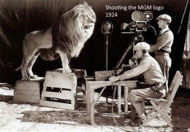 MGM logo filming.jpg