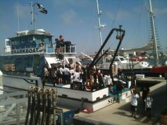Marine Institute Students on SeaWatch - SharkBoat 13