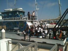 Marine Institute Students on SeaWatch - SharkBoat