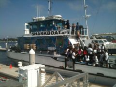 Marine Institute Students on SeaWatch - SharkBoat 11