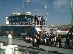 Marine Institute Students on SeaWatch - SharkBoat 10