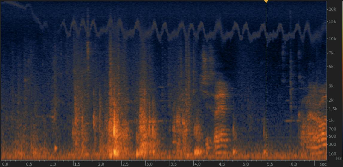 MKH40 high pitch noise - Equipment - JWSOUNDGROUP