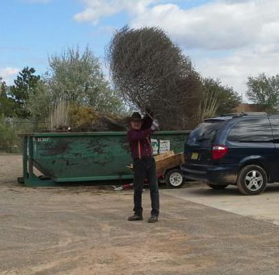 tumbleweed big.jpg