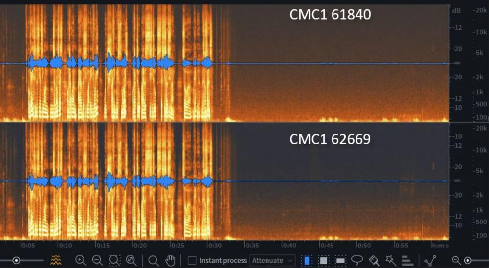 CMC1 noise.jpg