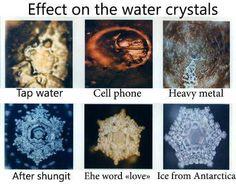 a6b38689d6e24281e07b7873f37635ae--water-experiments-living-water.jpg
